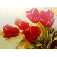 Красные тюльпаны. Картина по номерам 40х50