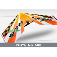 Самолет Techone Mini Popwing-600 EPP COMBO