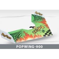 Самолет Techone Popwing-900 EPP COMBO