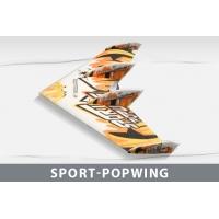 Самолет Techone Sport Popwing EPP COMBO