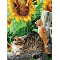 Картина по номерам Деревенские кошки 40х50