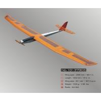 "Модель самолета Lanyu 100""E-FAIR"
